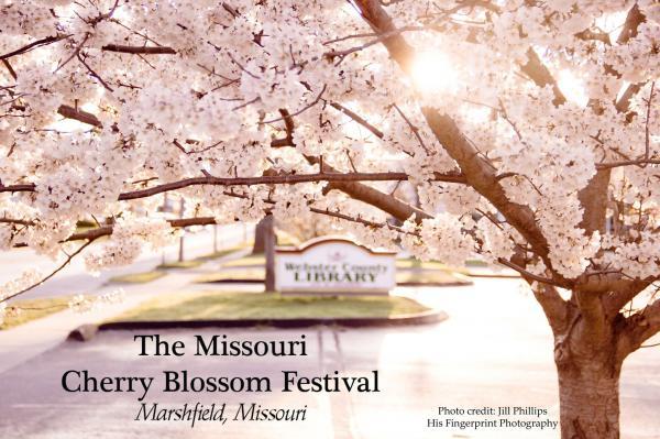 Cherry Blossom Festival Vendor Fair
